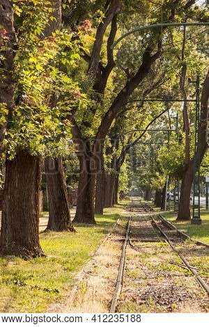 Old And Neglected Tram Track, On A Tramway Line Of Szeged, Hungary, With Grass Growing And Trees Aro