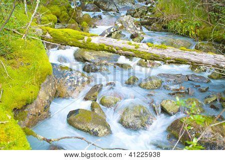 Schnell Strom fließt zwischen bemoosten Felsbrocken