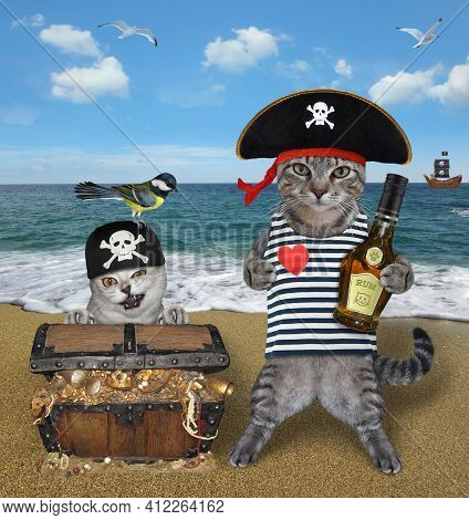 A Gray Cat With A Dog Are Next To A Pirate Chest Full Of Treasures On The Seashore.