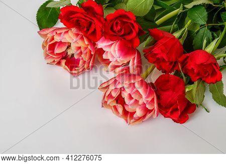 Five Roses Three Tulips