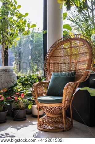 Peacock Wicker Rattan Chair And Flowers In Living Room Overlooking The Garden. Wicker Chair Interior