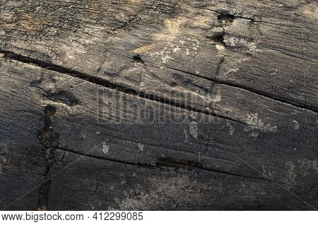Wooden Charred Log Background Texture. Black Abstract Background.