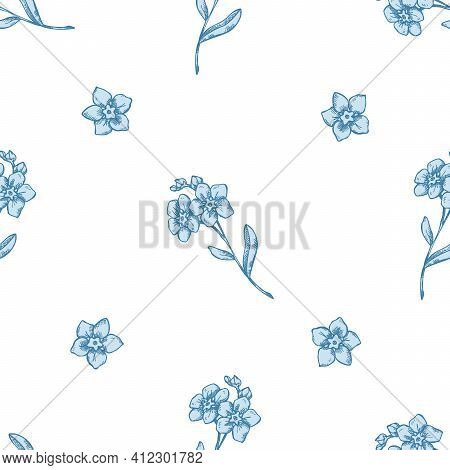 Seamless Pattern With Hand Drawn Pastel Forget Me Not Flower Stock Illustration