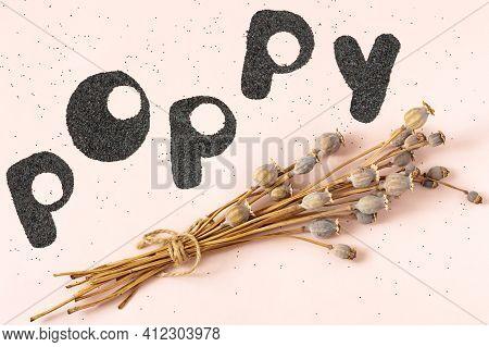 Dried Poppy Bolls With Long Stem. Inscription