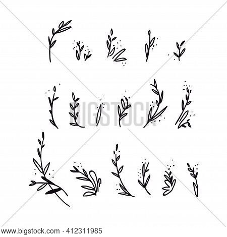 Set Of Hand-drawn Doodle Twigs. Collection Of Abstract Black Shapes Of Branches Isolated On White. V
