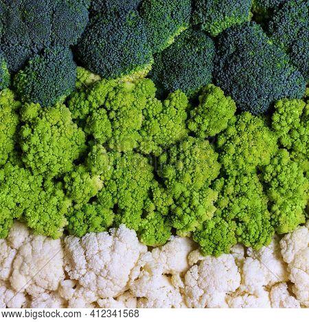 Set Of Broccoli, Cauliflower And Roman Cauliflower. Fresh Cabbage Background. Green Vegetable Backdr