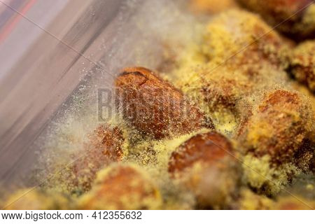 Mold On Pine Nuts. Macro Of Yellow And Green Spores And Fungi Growing On Nuts. It Looks Like A Fores