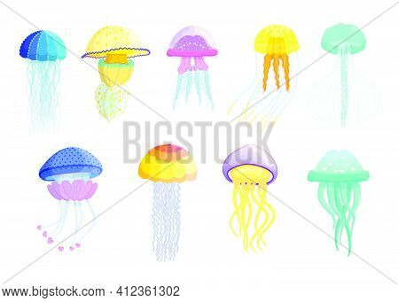 Creative Different Jellyfishes Flat Set For Web Design. Cartoon Cute Swimming Marine Creatures Isola