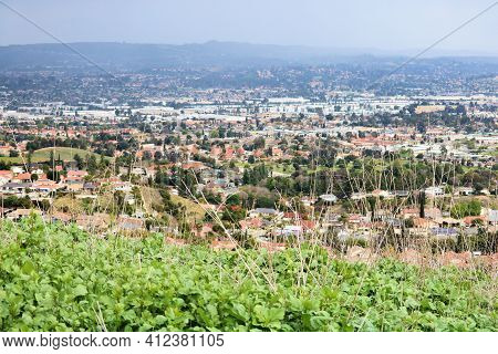 Rural Hillside With Lush Green Plants On A Field Overlooking The Urban Sprawl Of The City Taken In T