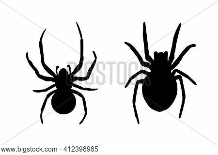 Spider Black Widow Set. Black Bug Spider Silhouette, Isolated White Background. Scary Halloween Icon