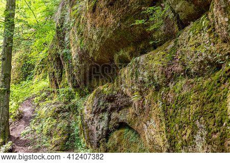 Moss Covered Rocks In The Drachenschlucht, Dragon Gorge Near Eisenach, Thuringia