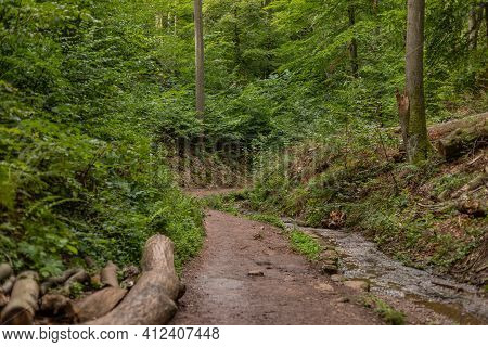 Hiking Trail And Stream In The Drachenschlucht, Dragon Gorge Near Eisenach, Thuringia