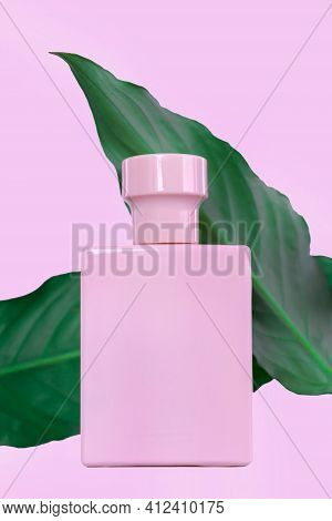 Perfume In A Pink Bottle On A Pink Background, Isolate. Plants, Fresh Herbal Scent. Vertical Phot