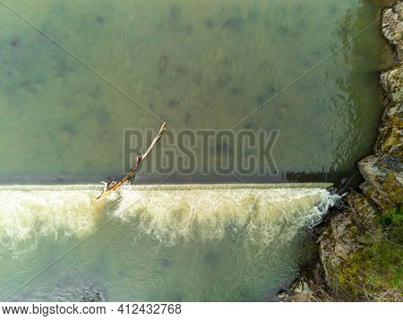 Stucked Big Pine Log In The Flowing River Aerial Drone Top Down View Over Olt River In Romania.