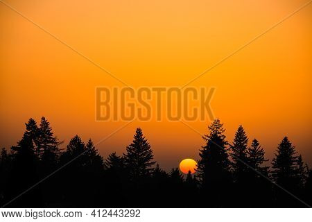 Sun Goes Down Behind The Top Of The Trees During Sunset In Winter With Orange Sky