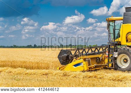 Yellow Grain Harvesting Combine In A Sunny Day. Yellow Field With Golden Grain. Agricultural Technic