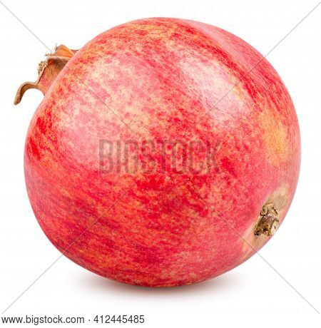Isolated Pomegranate. One Whole Pomegranate Fruit Isolated On White Background Clipping Path