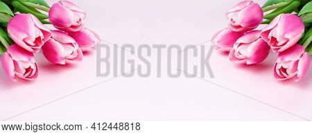Banner. Bouquets Pink Tulips On Pink Background. Greeting Card. Mothers Day, March 8, Valentine's Da