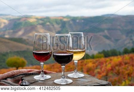 Tasting Of Portuguese Fortified Port Wine, Produced In Douro Valley With Colorful Terraced Vineyards
