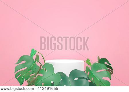 White Podium With Green Mostera Leaves On Pink Background