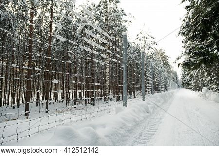Tall Metal Fence With Smaller Holes In The Winter Forest. Fencing A Private Area From Intruders. Fen