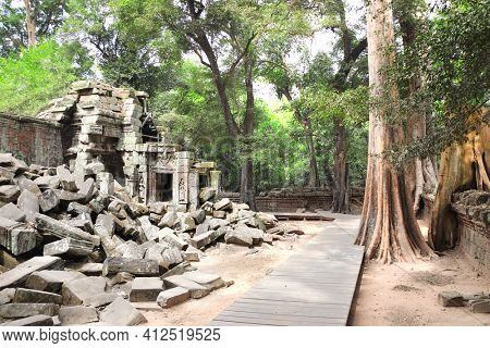 Giant banyan tree and ruins of khmer ancient temple, Angkor Wat (Angkor Thom) complex, Siem reap, Cambodia, Indochina. UNESCO world heritage Site