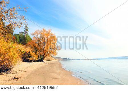 Calm fall season. Beautiful autumn tree on the sandy bank of the Volga river, Samarskaya Luka reserve, Zhiguli mountains, Russia