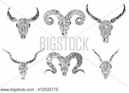 Vector Set Of Silhouettes Skulls Of Horned Animals Wild Buffalo, Bull, Goats And Ram On White Backgr