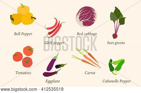 Set Of Fresh Vegetables Made In Flat Design. Tomatoes, Eggplant, Chili Pepper, Red Cabbage, Carrot,