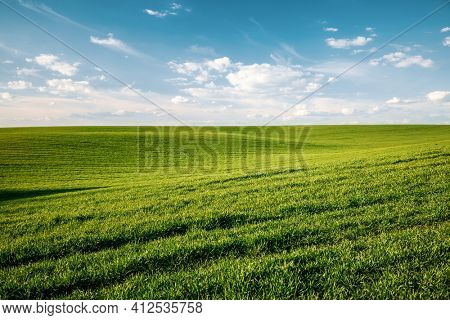 Fantastic view of green rural land and cultivated fields. Location place of Ukrainian agricultural region, Europe. Photo wallpaper. Agrarian industry. Minimalistic landscape. Beauty of earth.