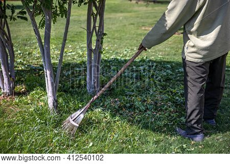 Serrated Metal Rake For Garden Cleaning. Garden Care.