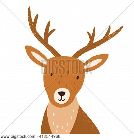 Head Of Funny Young Deer With Horns. Portrait Of Adorable Reindeer. Cute Baby Animal Isolated On Whi