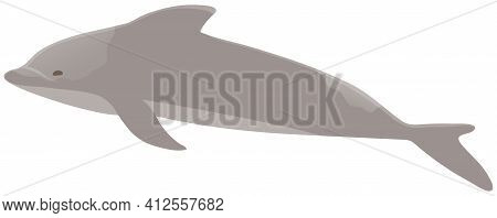 Dolphin With Smooth Skin Without Scales. Marine Mammal Living In Water Vector Illustration