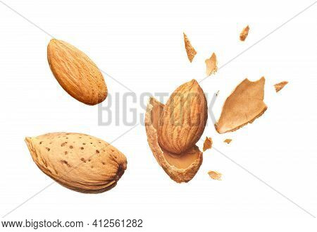 Almond Shell Cracked Into Pieces And Whole Almond Isolated On White