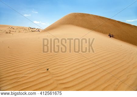 Cerro Blanco Sand Dune, The Highest Dunes On The World Located Near Nasca Or Nazca Town In Peru, One