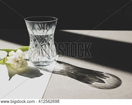 Glass Of Water And Wild Tulip In Sunlight. Summer Contrasting Still Life Scene With Long Harsh Shado