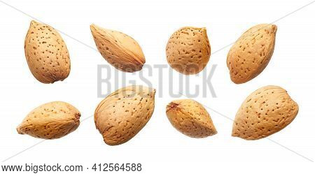 Set Of Almonds Nut In Shell Isolated On White Background