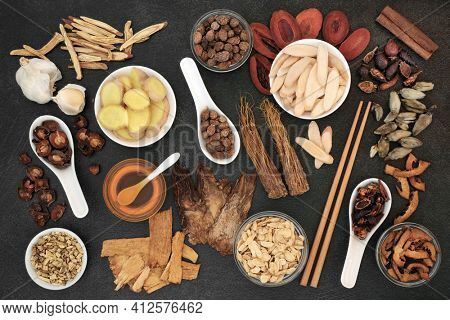 Traditional Chinese herbal medicine with herbs  honey to treat cold  flu virus . Also used to treat fever, coughs  lung disease. Natural healing health care concept. Flat lay, top view.