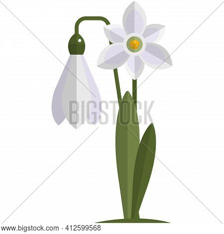 Snowdrop Flower Vector Spring Plant Icon Illustration