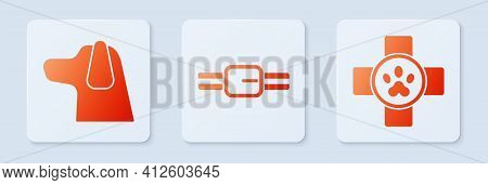 Set Collar With Name Tag, Dog And Veterinary Clinic Symbol. White Square Button. Vector