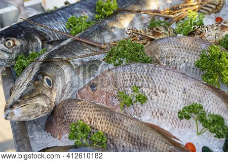 Fresh Sea Fish At Street Food Market In Thailand. Seafood Concept. Raw Fish For Cooking