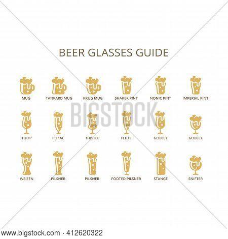 Beer Glasses Guide Infographic. Mug, Strange, Goblet, Pilsner Glass Type Vector. Open Sans Font.