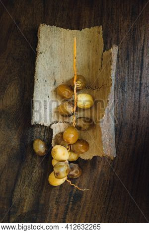 Bunch of ripen Arabian dates. Top view of sweet dates on wooden, rustic background.  Food still life.