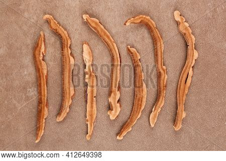 Dry Reishi Mushroom Flat Lay. Ganoderma Lingzhi, Medicinal Mushroom.
