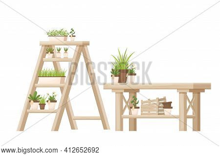 Flower Shop Wooden Furniture, Store Equipment With Shelving Ladder And Desk Isolated On White Backgr