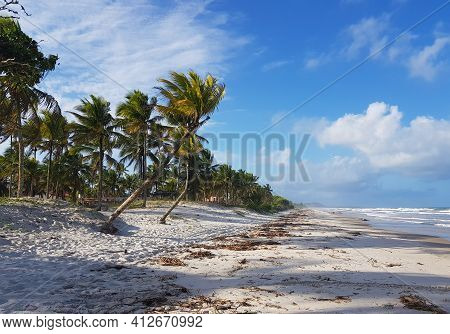 Tropical Deserted Beach With Coconut Palms In Summer.