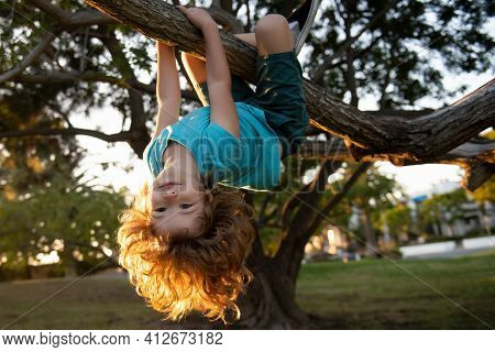 Smiling Child Climbing A Tree In The Garden. Active Kid Playing Outdoors On Sunny Day . Portrait Of