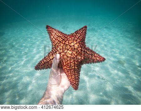 Hand Of Snorkeling Man Holding Starfish In The Clear Blue Water. Concept Of Holiday, Vocation And Re