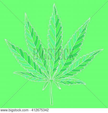 Marijuana Leaf. Hand Drawn Narcotic Cannabis Design Element. Hemp Vector Illustration Isolated Over