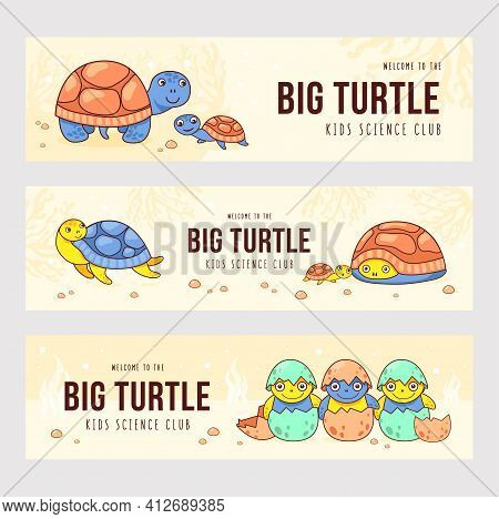 Modern Banner Designs With Lovely Cute Turtles. Brochures For Kids Science Club With Little Turtles.